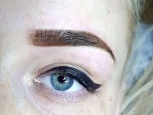 ombre brows training
