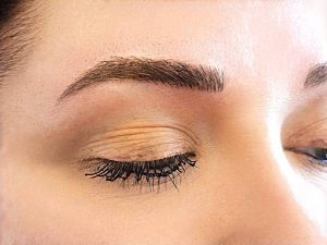 Permanent Cosmetic brow training